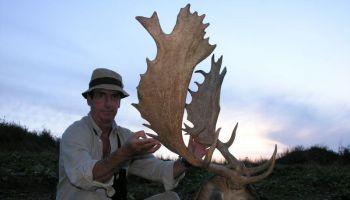 Fallow Deer Hunting Offer